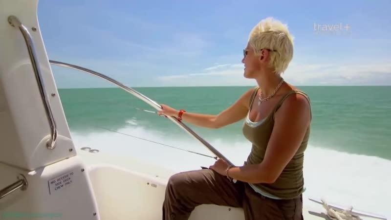 BBC «Большое австралийское приключение (7). Дарвин» (Познавательный, природа, путешествие, 2013)