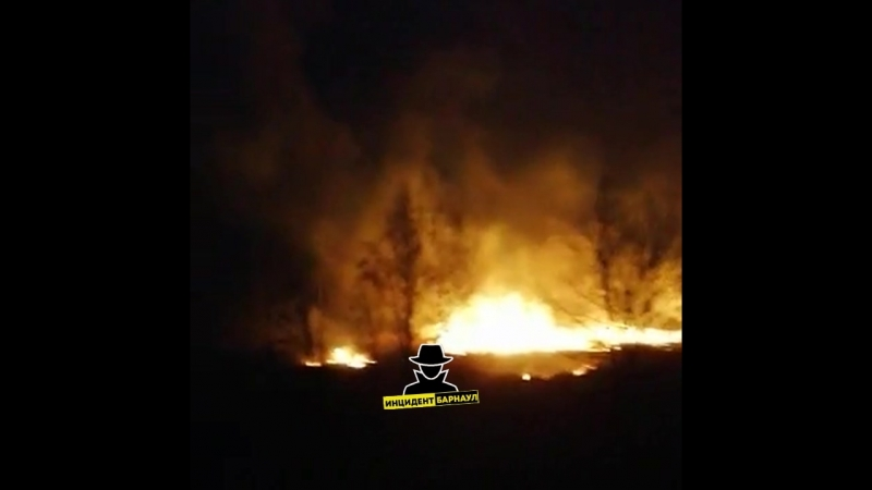 Горят поля в районе санатория Обские плёсы (Инцидент Барнаул)