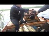 Калмыкия ... Подводная охота на Каспии ...