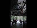 коза дереза 9 мая парк Динамо