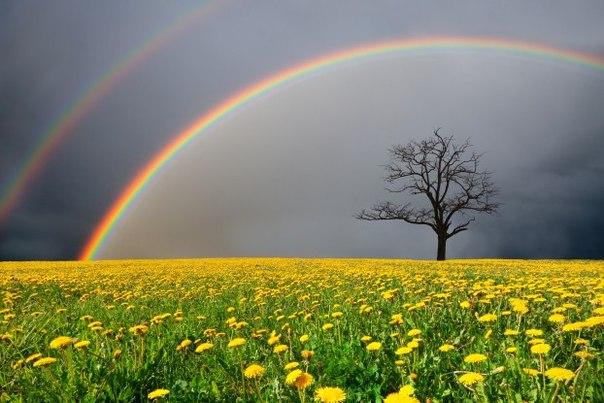 Наши желания имеют свойство сбываться, причем, самым непредсказуемым образом...!!! И это правда!!! Пусть сбудется все ваши желания!!! ❤ 😘