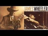 James Wheeler - Can't Take It (2000)