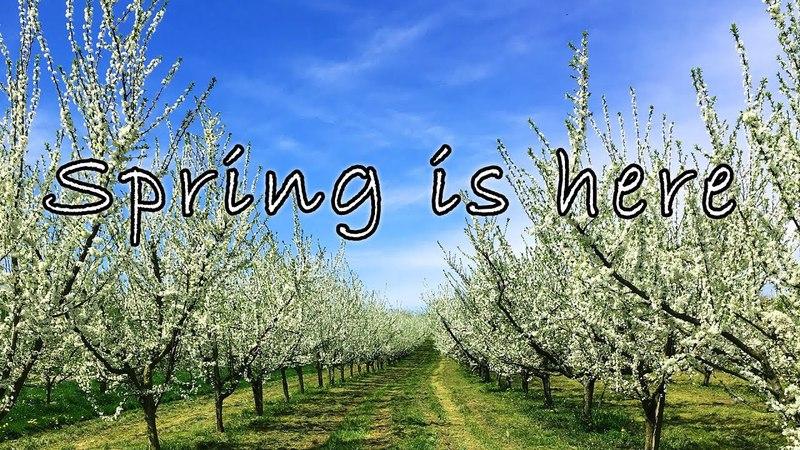 Spring is here. Artstudio-rs.com presents: Frühling in Bühl-Baden.