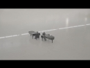 Andrea Bocelli, Matteo Bocelli - Fall On Me