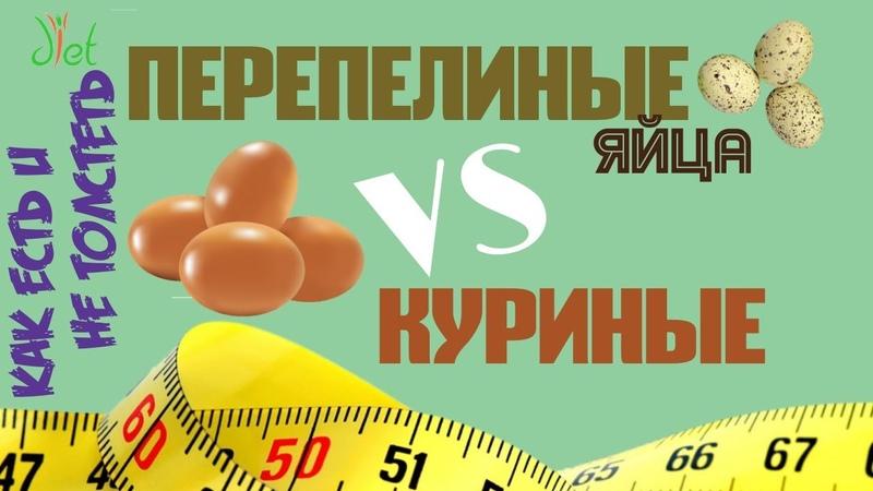 Перепелиные яйца и правильное питание ПП Польза как варить яйца МИФЫ