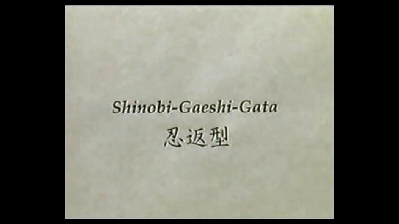 Manaka Unsui - Togakure-ryu ninjutsu - shinobi gaeshi gata