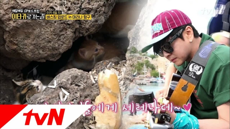 Road to Ithaca 아기길냥이를 위한 도현의 세레나데 180812 EP 5