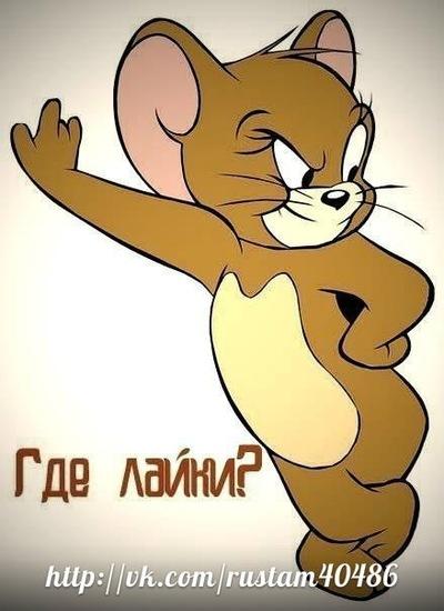Рустам Волк, 24 сентября , Нижневартовск, id164871171