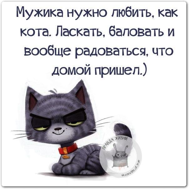 https://pp.vk.me/c543105/v543105123/14c90/bD4KQzm3XNc.jpg