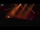 J. S. Bach / Nicolas Godin - Contrepoint en Concert