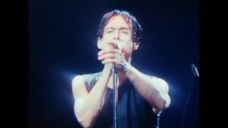 Игги Поп Жажда жизни Iggy Pop Lust For Life_(1986)