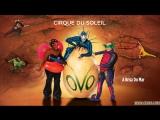 OVO - Cirque du Soleil Soundtrack Album
