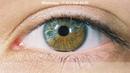 Natural Health.Уникальное средство для профилактики и восстановления зрения - OCULUS
