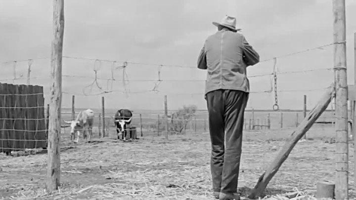 Хад - Hud (Пол Ньюман)(1280x544p)[1963, США, драма, WEB-DLRip-AVC] MVO (2.23Gb)