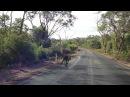 Australia New Zealand adventure (2013, Anna Veretennikova)