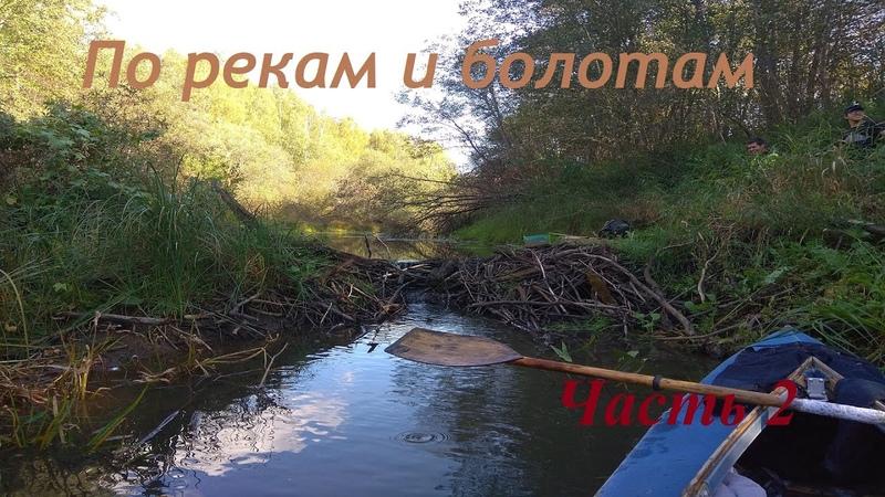 Осенний трип - Часть 2 | Сплав на байдарках по реке Дубна