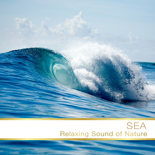Fly Project альбом Sea Relax Sound Of Nature