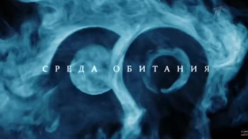 СРЕДА ОБИТАНИЯ Табачный заговор 16 ноября День отказа от курения Давай уже решайся Хватит курить