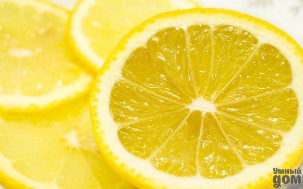 Польза и вред лимона При слове лимон сразу хочется морщиться. Всем известно, что первая помощь при простуде – это чай с лимоном. Но кислый фрукт очень полезен для нашего организма. Лимон используют в кулинарии, в фармакологии, косметологии и в народной медицине. Опытные хозяйки знают, как использовать этот фрукт в качестве помощника в бытовых целях. Польза лимона 1. Лимон полезен тем, что содержит витамин С, поэтому способен укрепить нашу иммунную систему. 2. Если утром очень сложно проснуться…