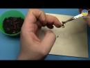 Как насадить червя на крючок _ 1080p