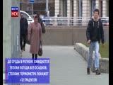 Теплая и дождливая погода придёт в Новосибирскую область