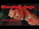 Sleeping dogs смешные моменты (монтаж)