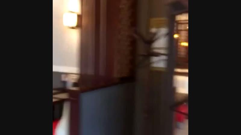 Кафе подключили к ПЛ Таксфон Партнер