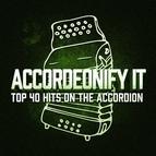 Erika альбом Accordionify - Top 40 Hits Played on the Accordion