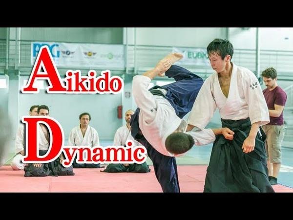 合気道 美しくダイナミックな 自由技 Beautiful and Dynamic Aikido in Italy