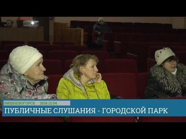 Публичные слушания по проекту городского парка в Вишневогорске 2018.12.04