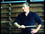 The Way of the Warrior: Shinto Ryu, The Samurai Way (Entire Video)