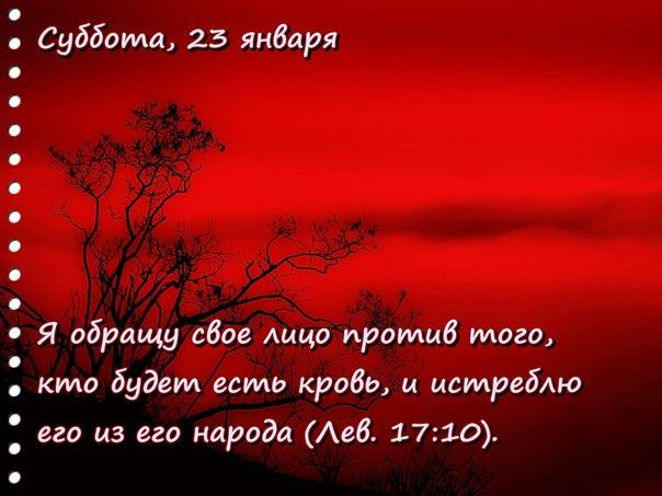 Исследуем Писания каждый день 2016 ZiyjFIMMqkU
