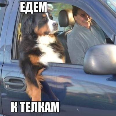 Ильнур Хабиров, 28 апреля 1997, Первоуральск, id137899801