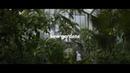 Kew Gardens | Anamorphic