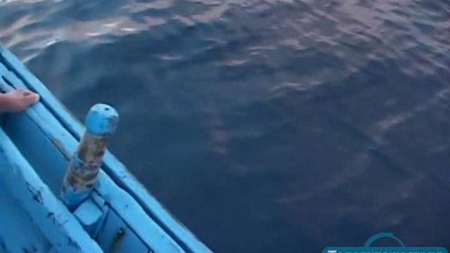 80 островов вокруг света 04 серия. Мальдивы. Между лагуной и океаном Il Giro Del Mondo In 80 Isole (2011)