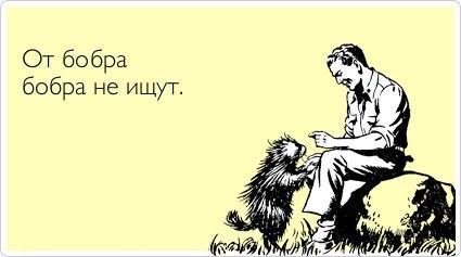 http://cs421229.vk.me/v421229512/8193/_0lAcsS6X00.jpg