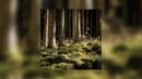 FREE Lil Uzi Vert Type Beat Surface ft Juice Wrld Prod Mike Vegas