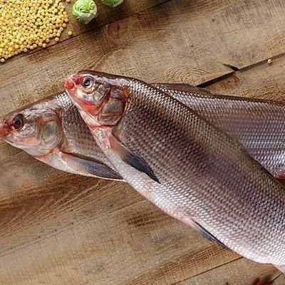 Рыба горячего копчения ярославль — pic 7