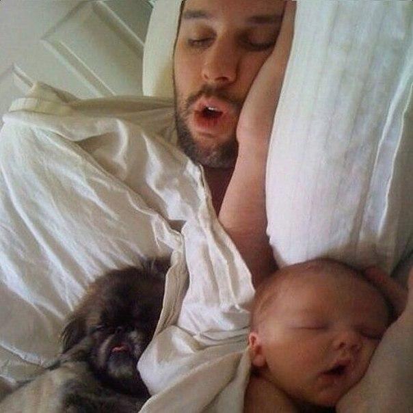 Сладко спят !!!
