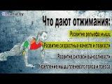 Отжимания от пола (обучающие видео)