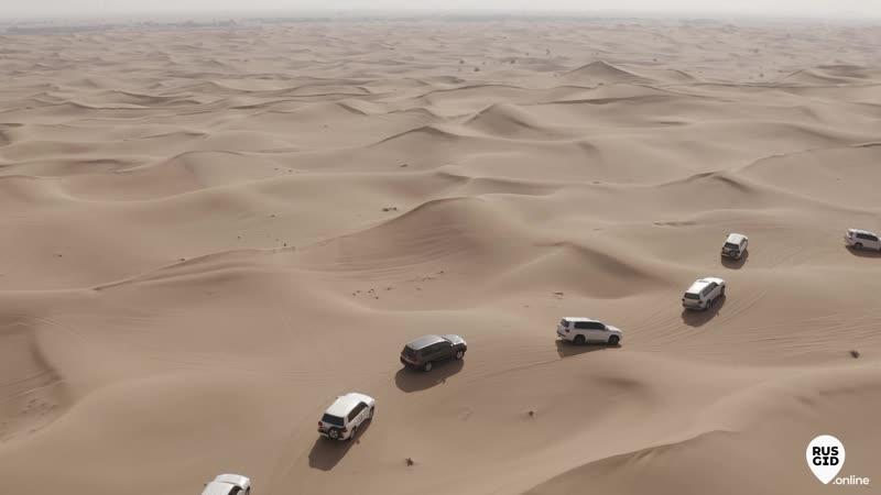 Приват тур Пустынное сафари на 100 человек