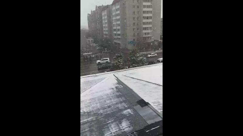 Лаура Беисова - Live
