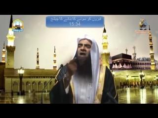 Madni Channel Par Live Shirk | Shk Tauseef Ur Rahman