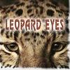 LEOPARD EYES - ROCK ГЛАЗАМИ ЛЕОПАРДА