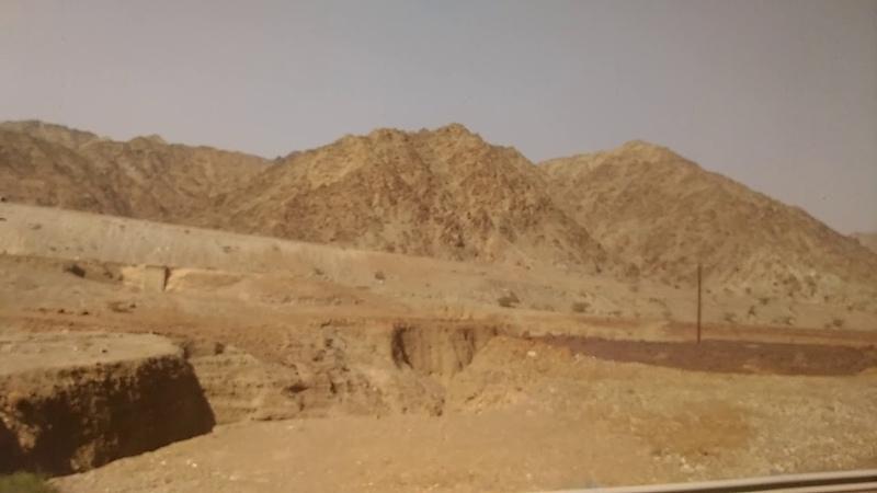 Арабские Эмираты (Видео 17)