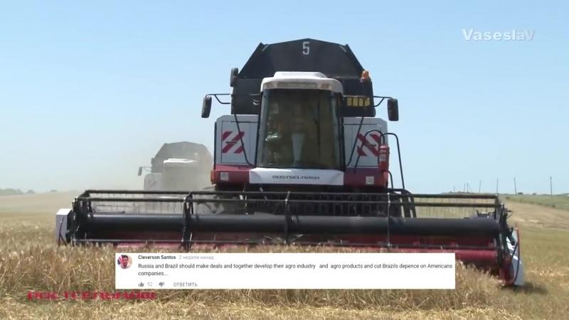 Россия мировой лидер по экспорту пшеницы