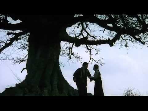 Sopyonje 서편제 西便制 (1993) Trailer(예고편 豫告篇) directed by Im Kwon Taek 임권택 감독 林權澤 監督
