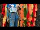 Фестиваль красок Холи И фотозона от нас