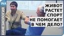 ЖИВОТ РАСТЕТ СПОРТ НЕ ПОМОГАЕТ В чем дело Проф Васильева Обучение кинезиологии