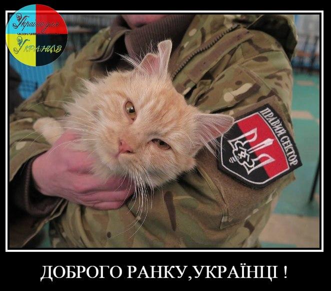 Суд отказался арестовать задержанного на взятке в Днепре судью, - Холодницкий - Цензор.НЕТ 3468